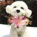 Bloemen band voor honden in grootte verstelbaar